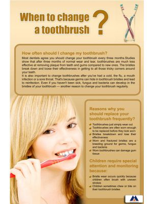 Poster English When to Change a Toothbrush (Paper) PO-040
