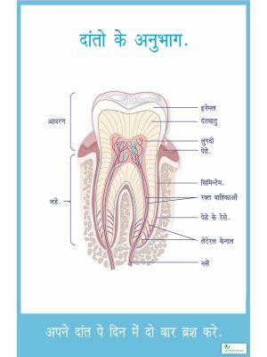 Poster Hindi अपने दांत पे दिन में दो बार ब्रुश करे  - 001
